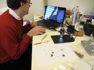 Μελέτη υφάσματος της βυζαντινής εποχής στο στερεοσκόπιο. Αρχαιολογικό Μουσείο Άρτας. Φωτογραφία Σ. Σπαντιδάκη.