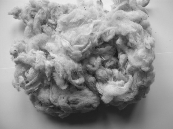 Sheep wool.