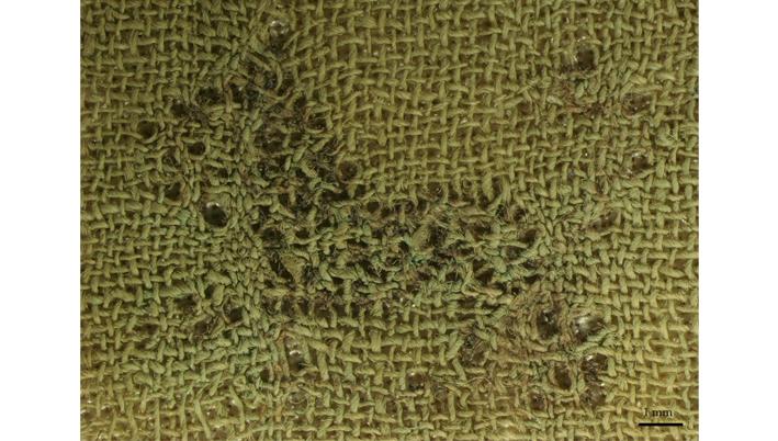 Λεπτομέρεια του κεντήματος από το Κορωπί στο στερεοσκόπιο, Victoria & Albert Museum, Λονδίνο. Φωτογραφία C. Moulhérat.